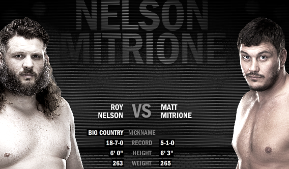 Nelson vs mitrione betting odds presidential odds betting on the white house